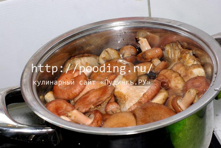 Рецепты рыжика в домашних условия
