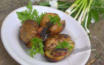 рецепт картофель запеченный в фольге на мангале