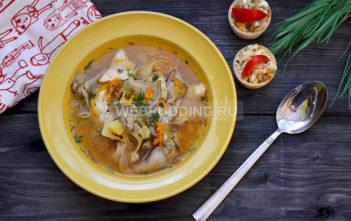 Куриный суп с вешенками