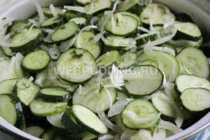 salat-iz-ogurcov-na-zimu-5