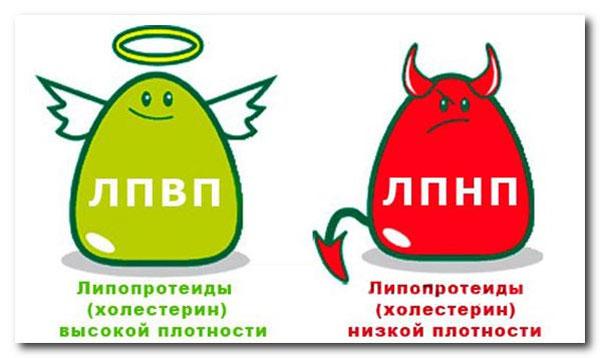nuzhno-li-snizhat-holesterin5
