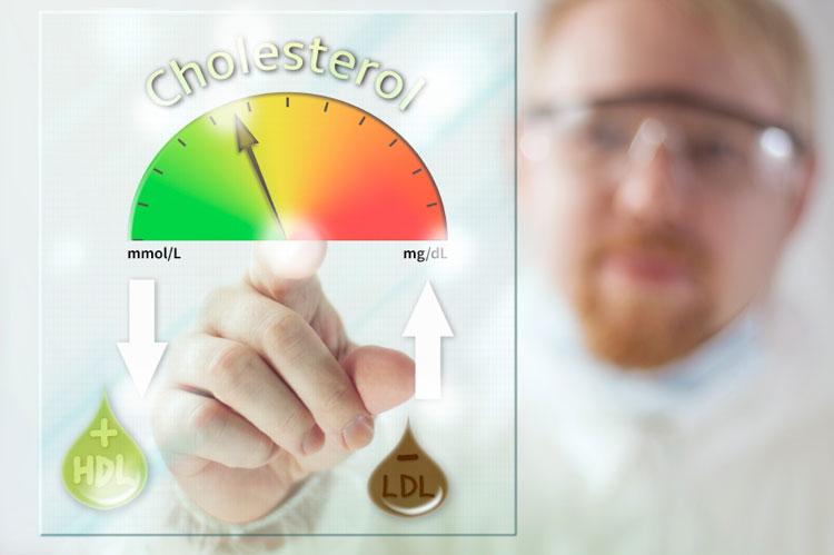 Нужно ли снижать холестерин