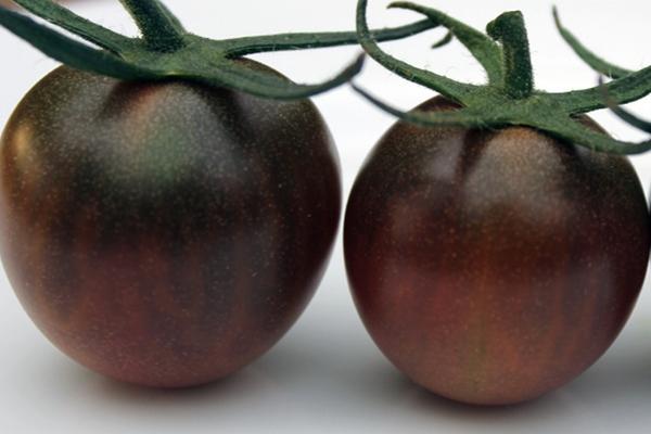 nuzhno-znat-o-pomidorah-6