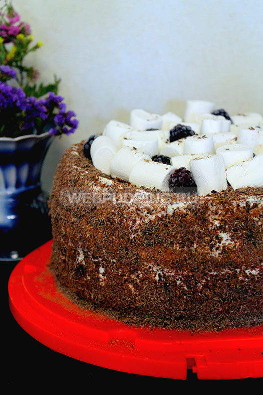 biskvitnyy-tort-s-medom-i-marshmellou-22