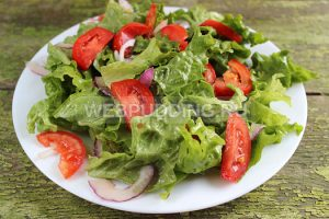 salat-s-indejkoj-i-pomidorami-5