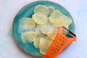 kartofelnye chipsy 1