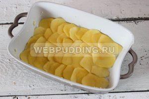 kartofelnyj graten 3