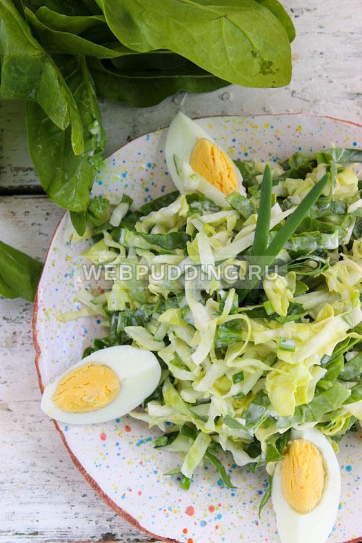 salat iz molodoj kapusty so shpinatom 9