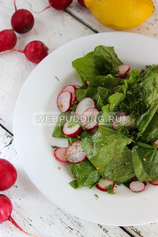 salat so shpinatom i rediskoj 8