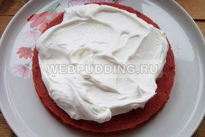 tort krasnyj barhat 15