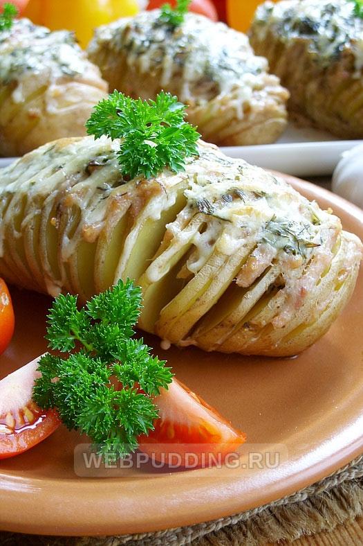 kartofel garmoshka v duhovke 16